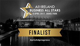 all ireland business all stars